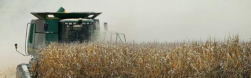 agri_farm